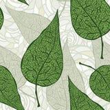 hojas inconsútiles del verde de la vendimia Imágenes de archivo libres de regalías