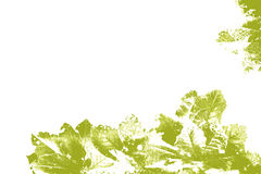 Hojas modeladas del verde amarillo Foto de archivo