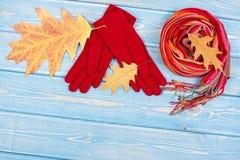 Hojas otoñales, guantes y mantón de lana para la mujer, ropa para el otoño o invierno, espacio de la copia para el texto Imagenes de archivo