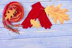 Hojas otoñales, guantes y mantón de lana para la mujer, ropa para el otoño o invierno, espacio de la copia para el texto Fotografía de archivo