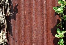 Hojas oxidadas del cinc Foto de archivo libre de regalías