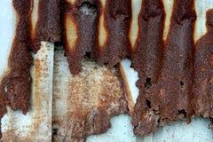 Hojas oxidadas del cinc Fotografía de archivo