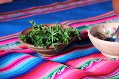 Hojas peruanas de Muna para el té Imágenes de archivo libres de regalías