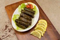 Hojas rellenas de la vid, cocina libanesa Fotografía de archivo