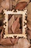 Hojas secadas del otoño en un marco Fotos de archivo