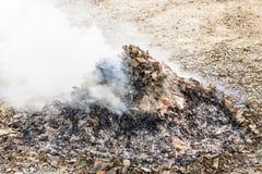 Hojas secas de la quemadura Imagen de archivo libre de regalías