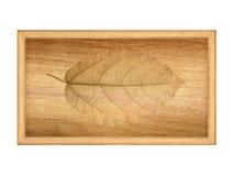 Hojas secas en la textura de madera Imagen de archivo