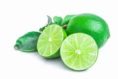 Hojas tailandesas del limón y del verde Fotos de archivo
