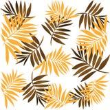 Hojas tropicales libre illustration