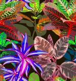 Hojas tropicales Fondo inconsútil libre illustration