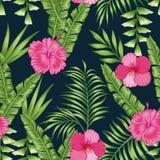 Hojas tropicales y fondo negro inconsútil de las flores ilustración del vector