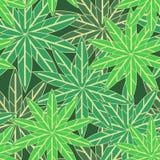 Hojas verdes ilustración del vector