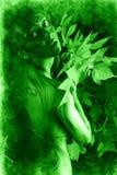 Hojas verdes Imagenes de archivo