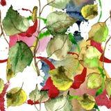 Hojas verdes del abedul Modelo inconsútil del fondo Textura de la impresión del papel pintado de la tela Foto de archivo libre de regalías