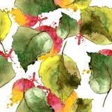 Hojas verdes del abedul Modelo inconsútil del fondo Textura de la impresión del papel pintado de la tela Imagen de archivo libre de regalías
