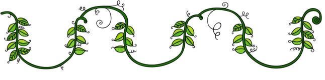 Hojas verdes en la cuerda ilustración del vector