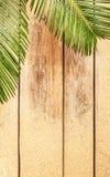 Hojas y arena de la palmera en el fondo de madera Fotografía de archivo