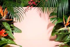 Hojas y flor tropicales de moda imagenes de archivo