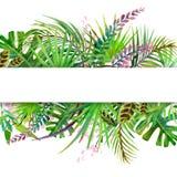Hojas y flores tropicales Imágenes de archivo libres de regalías