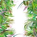 Hojas y flores tropicales Foto de archivo