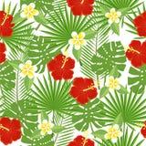 Hojas y flores tropicales inconsútiles Fotografía de archivo