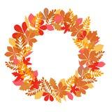 Hojas y lugar de otoño para el texto aislado en el fondo blanco ilustración del vector