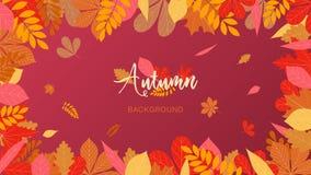 Hojas y lugar de otoño para el texto Colores del marrón ligero y oscuro stock de ilustración