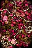 Hojas y perlas secadas de las flores Fotos de archivo