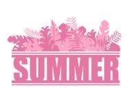 Hojas y plantas tropicales del rosa de la selva exótica del verano de las letras imágenes de archivo libres de regalías