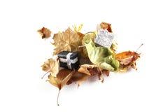 Hojas y regalo de otoño Imagen de archivo