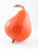 Hokaido pumpkin Stock Photos