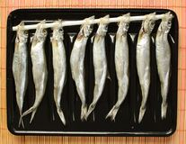 Hokaido's dried fish. A popular dried fish in Japan known as Shishiamo Stock Images