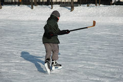hokej gracza lodu młoda obrazy royalty free