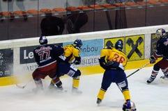 hokeja lód Obraz Stock