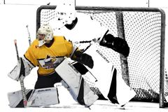 Hokejowa akcji fotografia fotografia royalty free