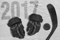 Hokejowy sezon 2017 Zdjęcia Royalty Free
