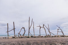 Hokitika drivvedtecken på den huvudsakliga stranden, Nya Zeeland Royaltyfria Bilder