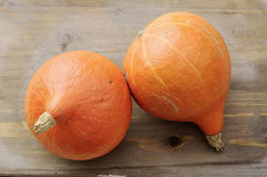 Hokka do pumpkins Stock Images
