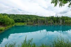 Hokkaido azul da lagoa (Aoiike em Biei), JAPÃO julho de 2015 Imagens de Stock Royalty Free