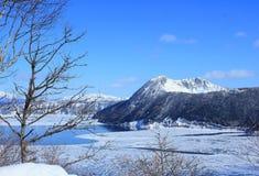 Hokkaido im Winter lizenzfreie stockfotos