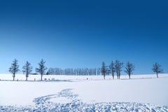 Hokkaido Japan Royaltyfria Bilder