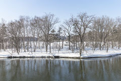 HOKKAIDO, JAPAN-JAN. 31, 2016: A beach is covered by snow in Hok. A beach is covered by snow in Hokkaido. Hokkaido is the most northern main island in Japan Royalty Free Stock Photography