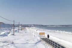 HOKKAIDO JAPAN-JAN 31 2016: En strand täckas av insnöade Hok Arkivbilder