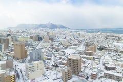 HOKKAIDO JAPAN-JAN 31 2016: Sikten av Hakodate från staen Fotografering för Bildbyråer