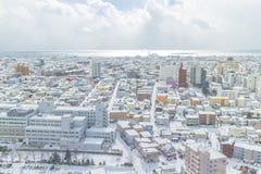 HOKKAIDO, JAPAN-JAN 31, 2016: A vista de Hakodate do sta Imagem de Stock Royalty Free