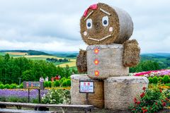 Hokkaido Japan - 19 Jul 2015 ; Straw doll strewman royalty free stock photography