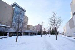 Hokkaido Japan. Walking path in a park in early winter Stock Image