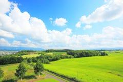 Hokkaido landscape. Bright rural landscape in Furano at Hokkaido, Japan Stock Photos