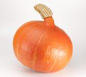 Hokkaido pumpkin. Orange hokkaido pumpkin on white background Stock Image