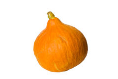 Hokkaido pumpkin isolated Royalty Free Stock Photos